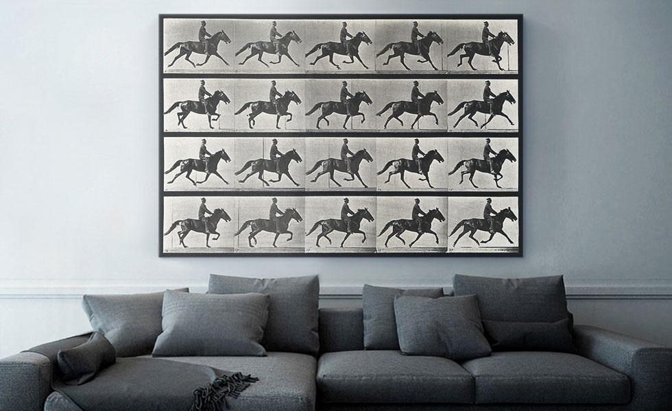 A Horse Trotting 1887