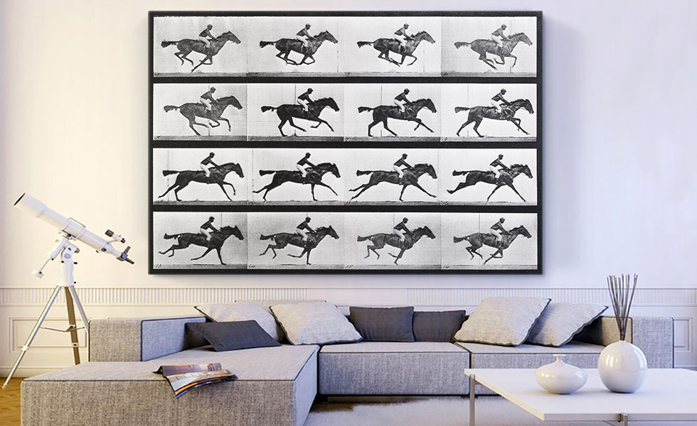 16 Frames of Racehorse