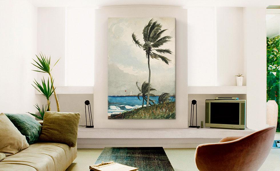 Palm Tree - Nassau 1898